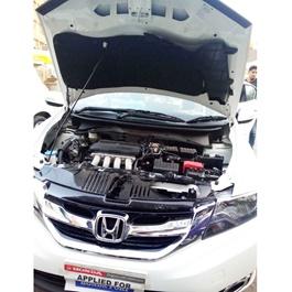 Honda City Bonnet Cover Protector Lid Garnish Namda - Model 2017-2020-SehgalMotors.Pk